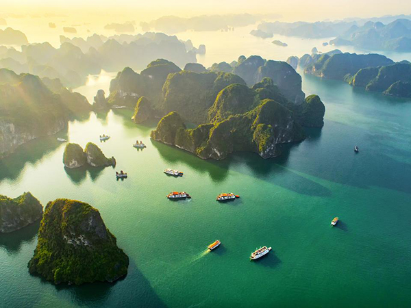 goldenstarcruisehalong 1