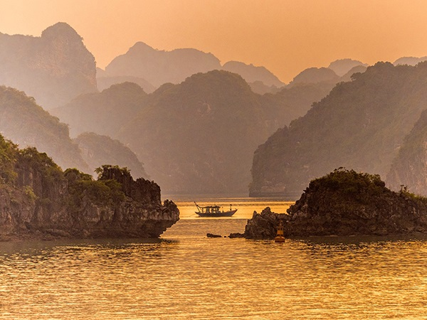 goldenstarcruisehalong 13